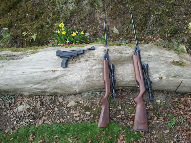 Air rifle and pistol guns on a log.